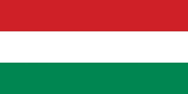 匈牙利语qy288千赢国际,匈牙利语口译,匈牙利语笔译,匈牙利语qy288千赢国际公司