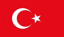 土耳其语翻译